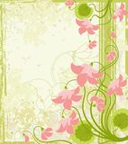 background floral Zdjęcia Royalty Free