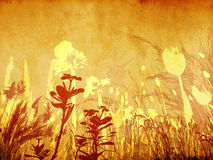 Background floral stock photography