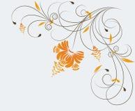 background floral Стоковые Фото