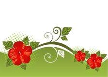 background floral 免版税图库摄影