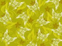 Background with floral, butterfly Stock Images