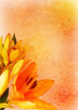 Background with floral decoration Stock Photo