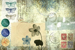 Background with floral and other old elements. Composition with some natural elements and old stamps Royalty Free Stock Photos