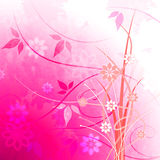Background Floral Shows Light Burst And Glaring Stock Photos