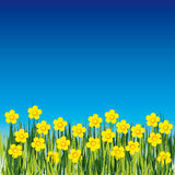 Background with flower Royalty Free Stock Images