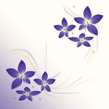 Background with flower Royalty Free Stock Image