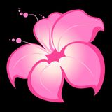 Background about flower. Abstract floral background about flowers for design Royalty Free Illustration