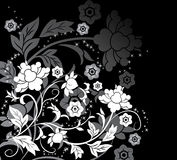 Background flower, elements for design, vector. Illustration Stock Photography
