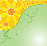 Background flower, elements for design, vector. Illustration Royalty Free Stock Photos