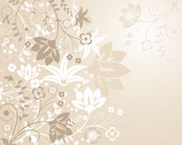 Background flower, elements for design, vector Royalty Free Stock Images