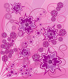 Background flower, elements for design, vector. Illustration Royalty Free Stock Photography