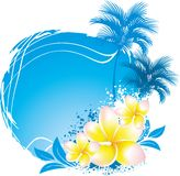 Background with flower plumeria Stock Photography