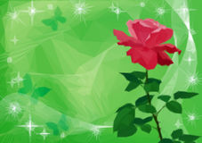 Background with Flower Rose and Butterflies Royalty Free Stock Images