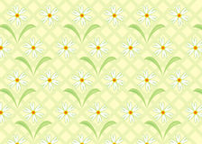 Background flower, vector. Illustration Royalty Free Stock Photo