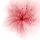 Background with flower Stock Images