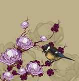 Background with flowering branch and bird titmouse, hand-drawing Royalty Free Stock Photography