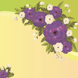 Background with flowers. Vector background with flowers for wedding and invitation Stock Images