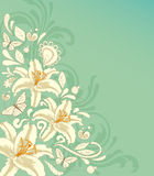 Background with flowers and butterflies. Decorative vector background with white flowers and butterflies Stock Photo