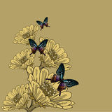 Background with flowers and butterflies, hand-drawing. Vector il Royalty Free Stock Photography