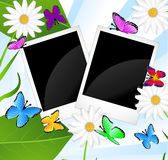Background  with flowers and butterflies. Vector illustration Stock Image