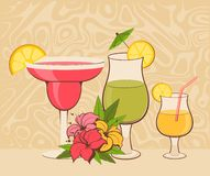 Background with  flowers and cocktail Royalty Free Stock Images