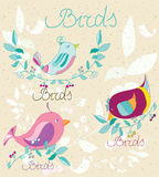 Background with flowers and colorful birds,set Royalty Free Stock Photos