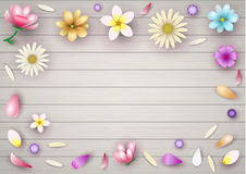 Background with flowers. Background with composition of different flowers. Vector graphics Royalty Free Stock Photos