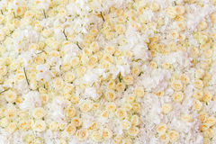 Background of flowers Royalty Free Stock Image