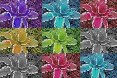 Background of flowers. flowers stock photos