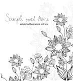 Background flowers with linear field with text Royalty Free Stock Photography