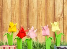 Cute Origami flowers on background Stock Image