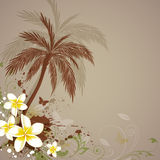 Background with flowers and palm Stock Image