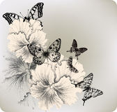 Background with flowers pansies and butterflies. V Royalty Free Stock Images