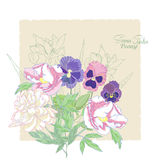 Background with flowers peonies,  irises and pansies-01 Stock Photography