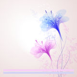 Background with flowers Stock Photos