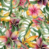 Seamless pattern of tropical flowers and leaves. Watercolor background. royalty free illustration