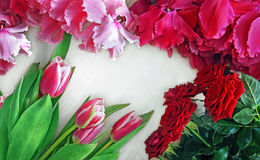 Background of flowers of roses, tulips pink and red cyclamen with place for text Royalty Free Stock Photos