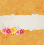 Background with flowers and torn paper Royalty Free Stock Photography