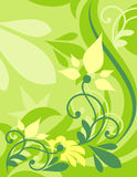 Background flowers vector Stock Photography