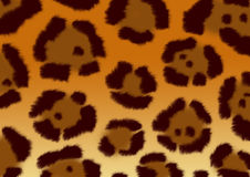 Background - a fluffy skin of a jaguar royalty free stock images