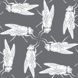Background from fly. Vector background from fly. Size and color can be changed vector illustration