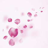 Background with flying petals Royalty Free Stock Image