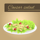Background food chicken Caesar salad tomato crackers cheese green red orange yellow beige frame illustration. Vector Stock Images