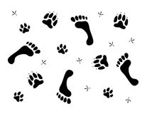 Background with footprints and paw prints Royalty Free Stock Photo