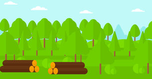 Background of the forest with piles of logs. Royalty Free Stock Image