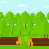 Background of the forest with piles of logs. Background of the forest with piles of logs vector flat design illustration. Square layout Stock Photography
