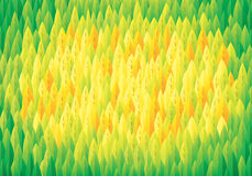 Background forest top view, vector Royalty Free Stock Image
