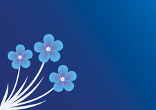 Background with forget-me-not Royalty Free Stock Image