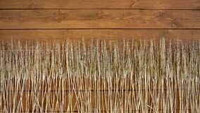 Background in the form of evenly spaced ears of rye on wooden boards