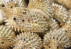 Background formed by golden hedgehogs. Royalty Free Stock Images